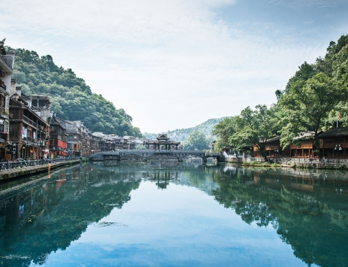 Percorso annuale di pratiche Dao-Yin, meditazione e medicina cinese